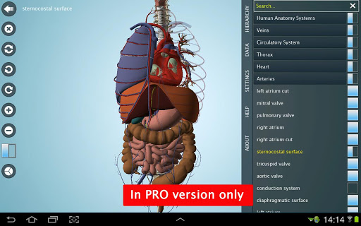 Anatomy 3D - Anatronica screenshot
