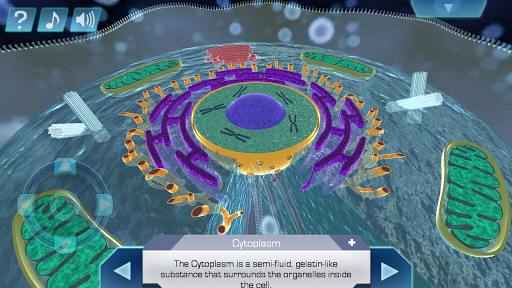 Cell World screenshot