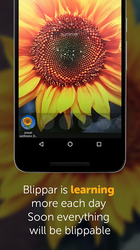 Blippar screenshot