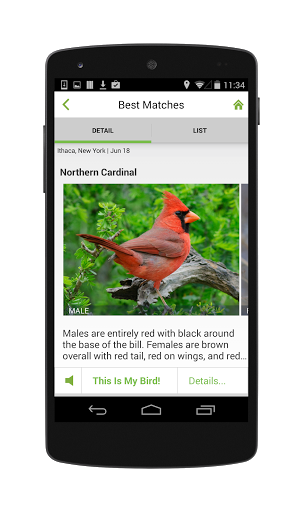Merlin Bird ID By Cornell Lab screenshot