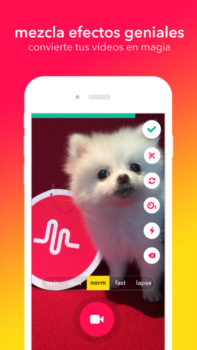 musical.ly - tu red social de vídeos screenshot