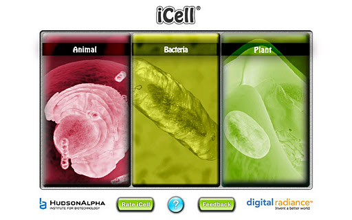 iCell screenshot